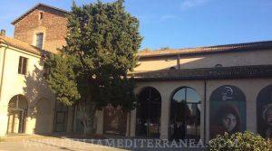 Museo San Domenico Di Fiori