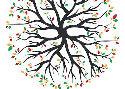 Il Giardino Segreto logo